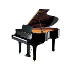قیمت خرید فروش پیانو آکوستیک Yamaha C3 PE