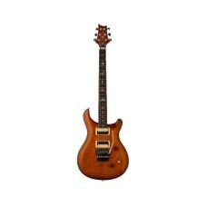 قیمت خرید فروش گیتار الکتریک PRS SE Floyd Custom 24