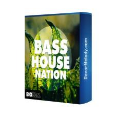 قیمت خرید فروش لوپ Big EDM - Bass House Nation