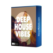 قیمت خرید فروش لوپ Big EDM - Deep House Vibes