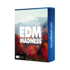 قیمت خرید فروش لوپ Big EDM - EDM Madness