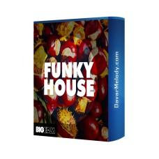 قیمت خرید فروش لوپ Big EDM - Funky House