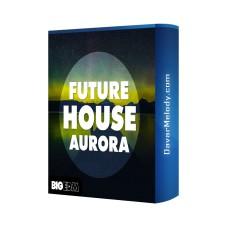 قیمت خرید فروش لوپ Big EDM - Future House Aurora