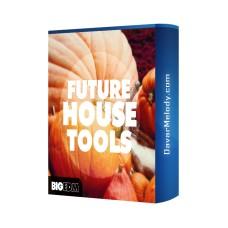 قیمت خرید فروش لوپ Big EDM - Future House Tools
