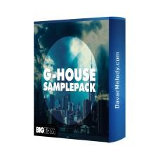 قیمت خرید فروش لوپ Big EDM - G-House Samplepack
