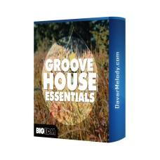 قیمت خرید فروش لوپ Big EDM - Groove House Essentials